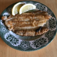 Fried sole